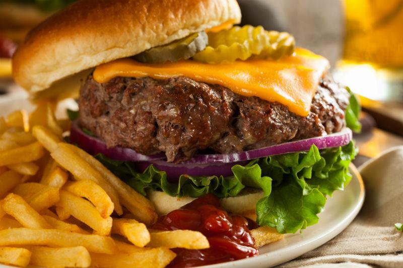 Bison Burger.jpg