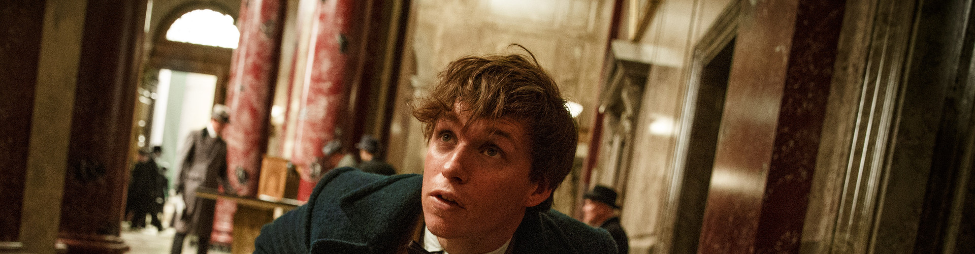"EDDIE REDMAYNE as Newt Scamander in Warner Bros. Pictures' fantasy adventure """"Fantastic Beasts and where to find them ""  a Warner Bros. Pictures release."