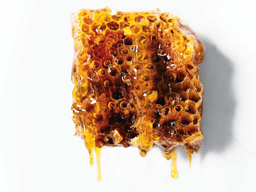 Go Cook With Fresh Honeycomb