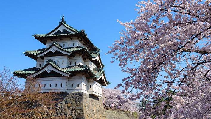 メインビジュアル : お引っ越し中の弘前城をスマホで再現! 満開の桜と天守をいつでも楽しめるAR技術