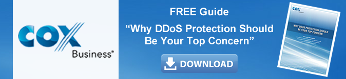 cta_why_ddos_protection_should_be Your_top_concern.fw.png