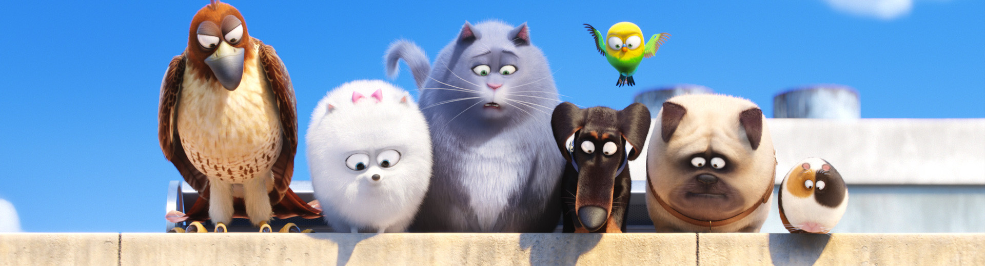 movie=pets-header.jpg