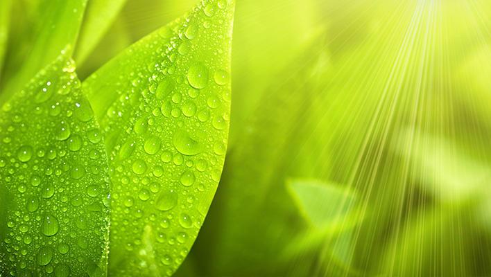 メインビジュアル : 100倍以上の発生効率を実現する人工光合成における技術とは