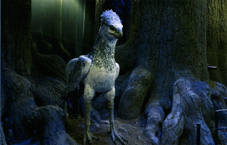 Hippogriff model at Harry Potter Studios
