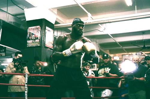 Wilder vs. Breazeale: The Champ in Brooklyn