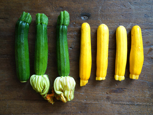 How to Buy, Store, and Cook Summer Squash, the Season's Most Prolific Piece of Produce