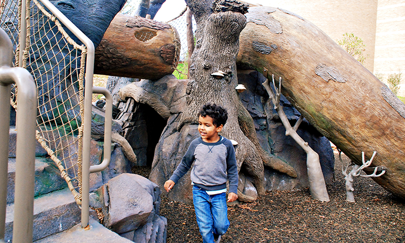 Fernbank's outdoor exhibits are full of hands-on fun. (Joleen Pete Photography)