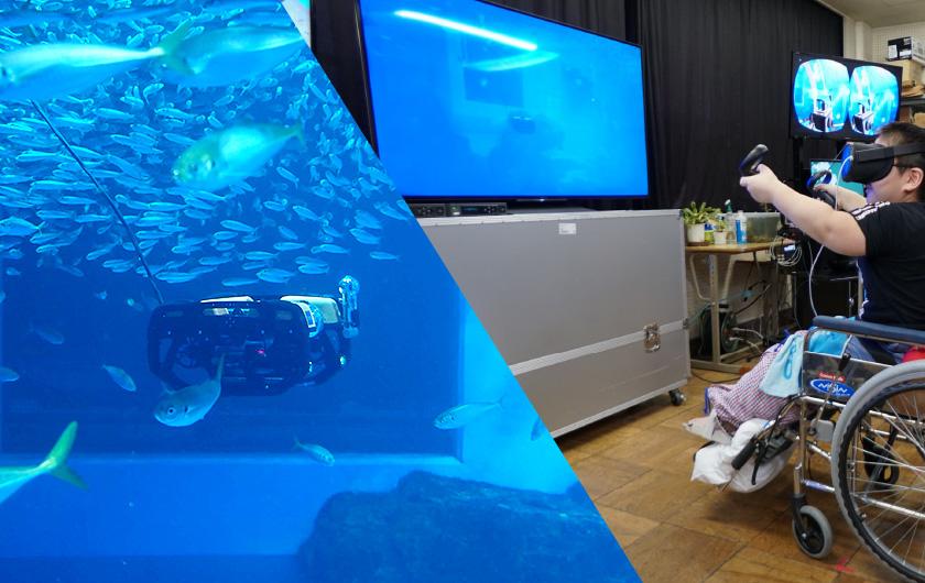 メインビジュアル : 5G時代に向けた遠隔教育、水族館と院内学級をつなぎVRと水中ドローンで体験学習