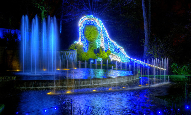 Top things to do in january in atlanta atlanta insiders blog for Botanical garden christmas lights
