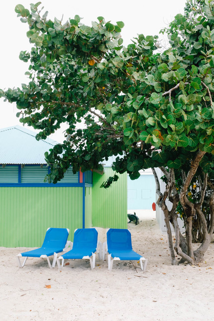 three blue beach chairs in front of green bungalow