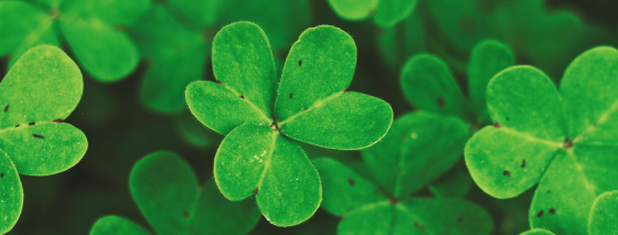 3 ways entrepreneurs can increase their luck in business