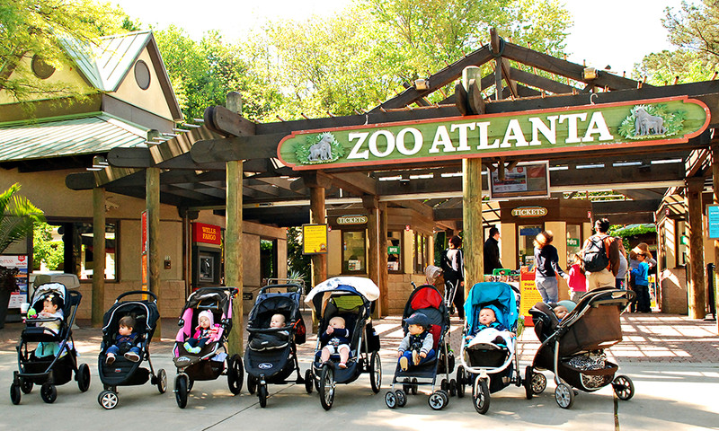 The youngest of kids can join Adventure Cubs at Zoo Atlanta.