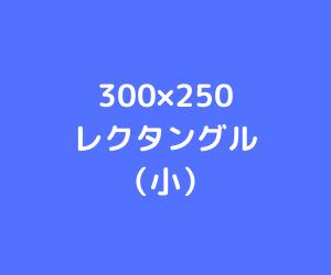 レクタングル小(サイズイメージ)